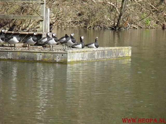 Castricum 15-04-2012 26 Km (62)