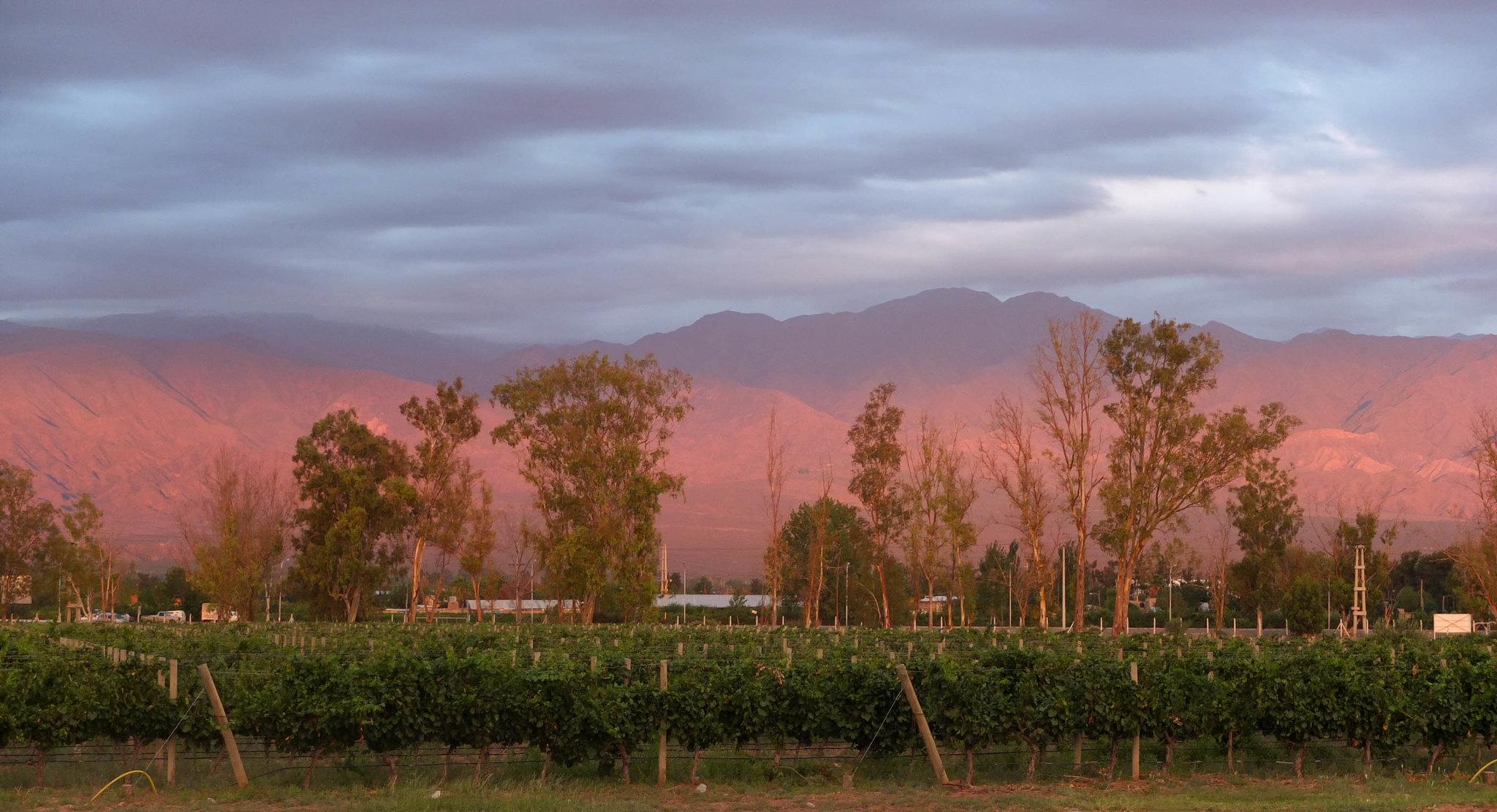 Amanecer en Mendoza