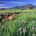 City of Boulder, Colorado - Open Space & Mountain Parks
