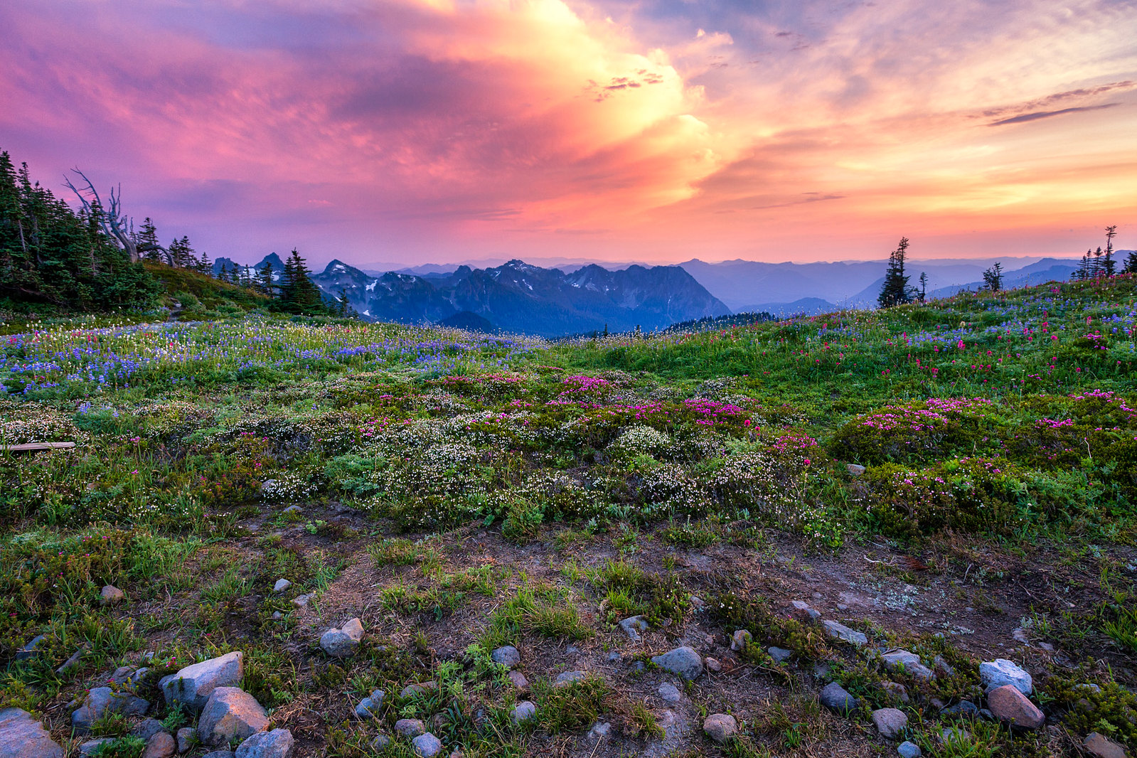 skyline trail sunset at mt rainier national park day hikes