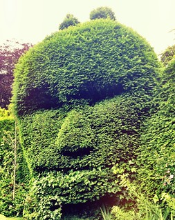 The face in green   by William Parsons Pilgrim
