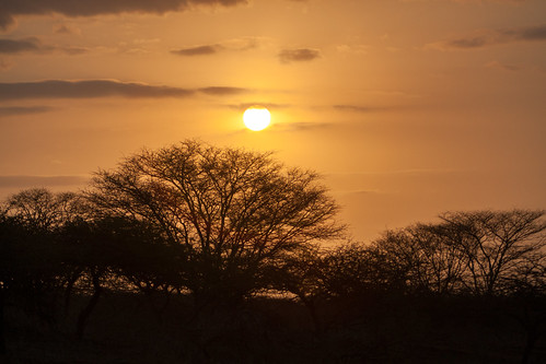 vacation southafrica safari safaripark gamereserve wildlifepreserve 2015 canonef70200f28lisusm zulunyala canon1dmarkiii