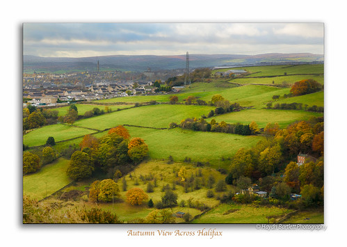 autumn green canon landscape colourful halifax mills 5dm3 haydnbartlettphotograpahy