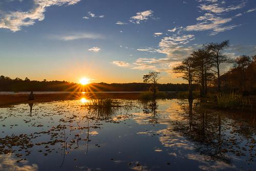 sunset usa lake reflection lago texas pôrdosol eua cypress ocaso uncertain caddolake reflexão cipreste