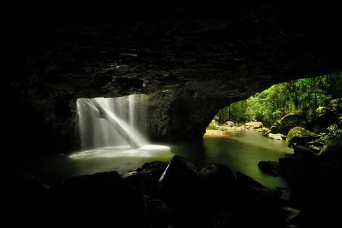 australia naturalbridge newsouthwales cave aus springbrooknationalpark limpinwood paulhollins nikond610