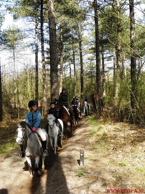 Castricum 15-04-2012 26 Km (49)