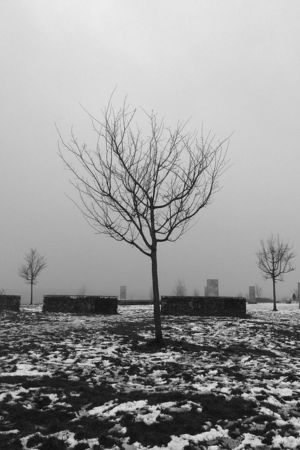 Tippelsberg in grau