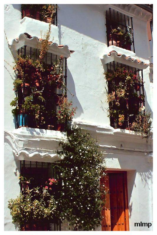 Fenêtre d'un pueblos brancos