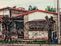 Casa Ramas
