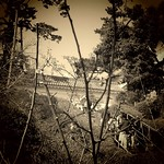 小田原城二の丸から常盤木門方面の眺め
