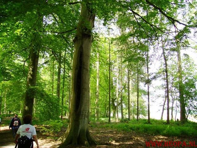 Zwolle 2007   42.5 km (12)