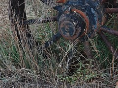 Wheel and Weeds