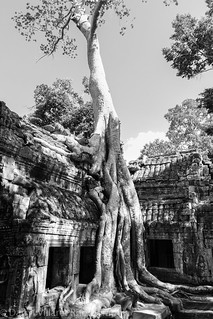 cambodia_angkor_wat_IMG_0385.jpg