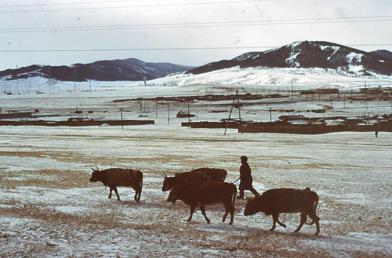 MONGOLIA 1994 01-