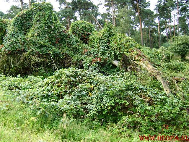 Veluwse Walkery 06-09-2008 40 Km (27)