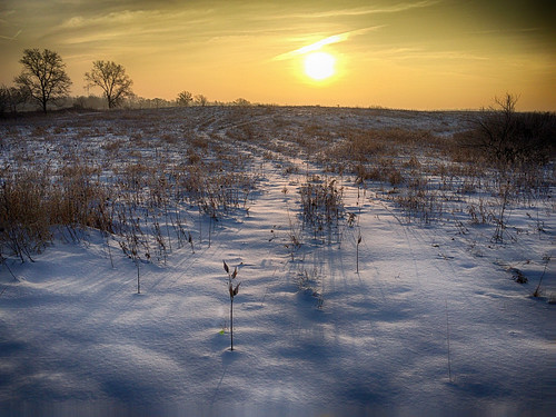 winter sun snow field clouds sunrise path tracks pro nik hydra hdr app iphone efex iphoneography