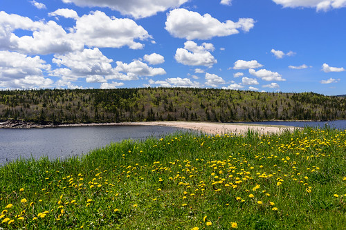 nova scotia beach sky clouds flowers nikon 24120 canada landscape outdoor