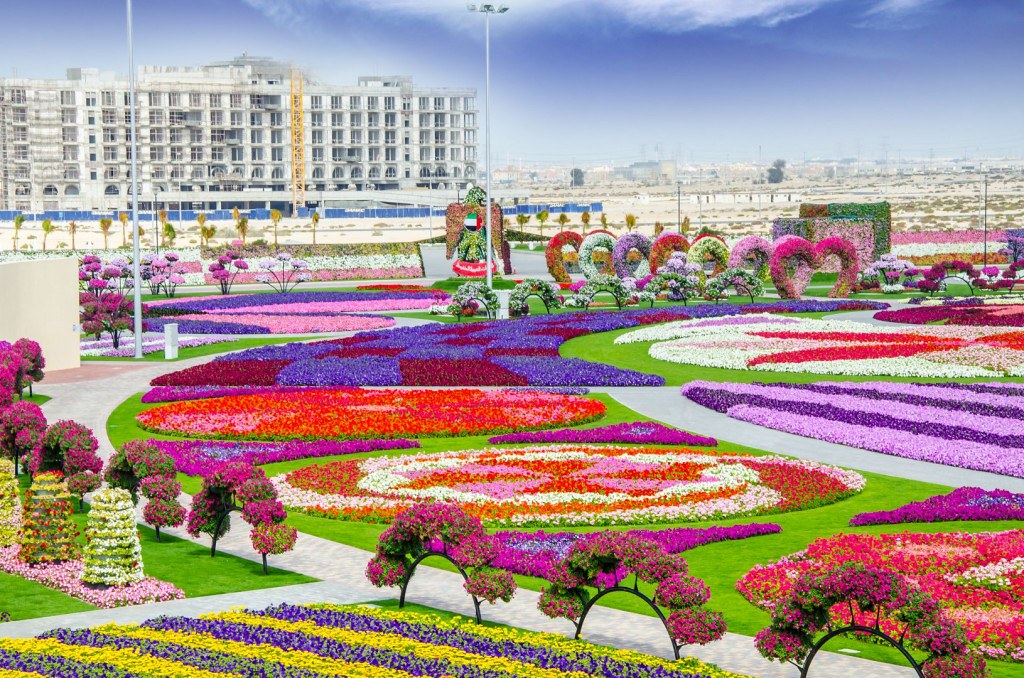 Dubai-Guide-miracle-garden