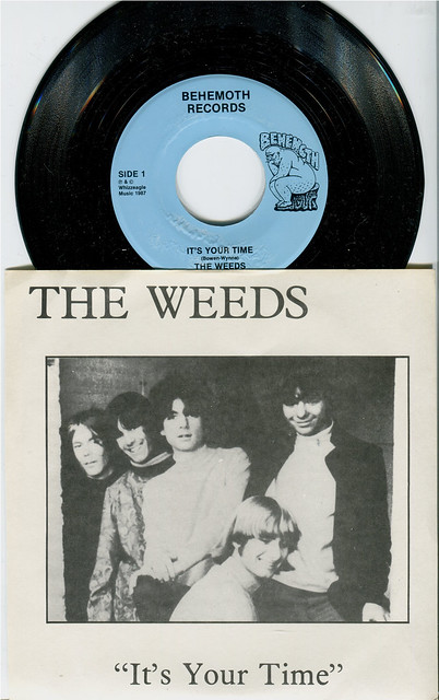 The Weeds 'It's Your Time'