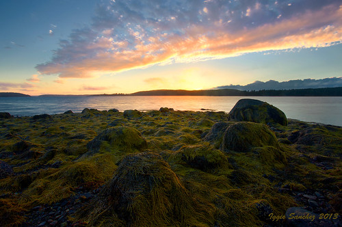 longexposure sunset sky beach colors clouds reflections pretty stones maine slowshutter marsh algae