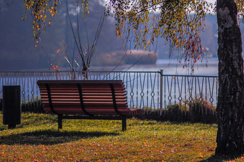 Herbst 2013 - the bench