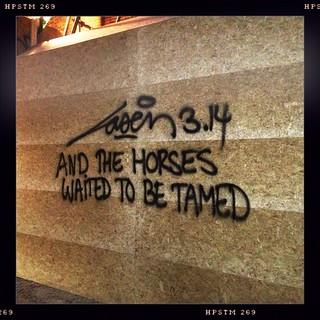 Laser 3.14 - tamed horses