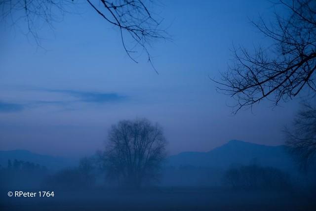 fog 0293