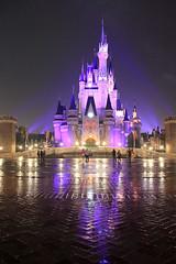 IMG_0903 Tokyo Disneyland