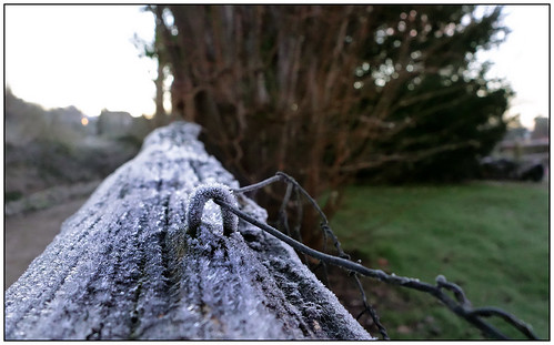 fence bokeh frostymorning chichester woodtexture wirefence rx100 happyfencefriday