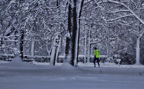 Snow runner | by Tomislav C.