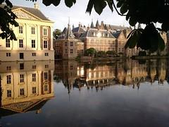 Hofvijver reflection