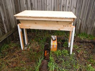 Hiving Honey Bees in Top Bar Hive   by EverydayUrbanGardener