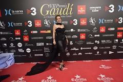 Catifa vermella VII Premis Gaudí (48)