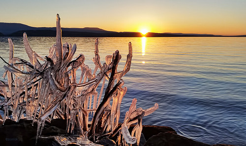 sunset lake ice water bush sundown shoreline arkansas icy lakedardanelle zormsk icecovered arkansasrivervalley lakedardanellestatepark