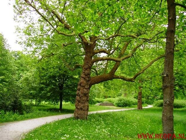 Zwolle 2007   42.5 km (29)