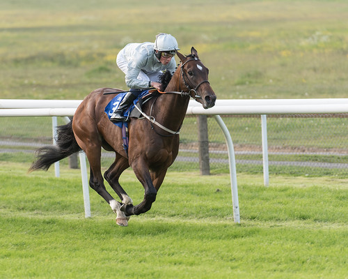 William Buick sits motionless upon Yalta