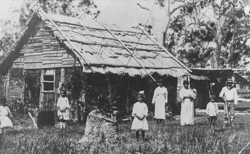 australiansouthseaislanders barkroof historic statelibraryofqueensland slq queensland 1914 pialba darby house children women man trees grass