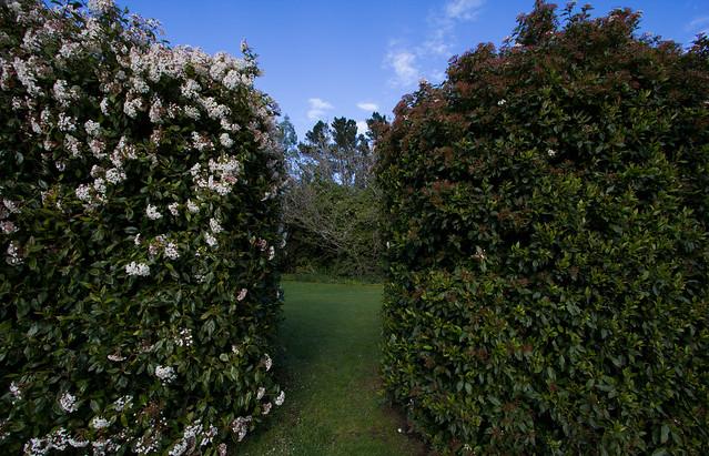 Waddington, New Zealand