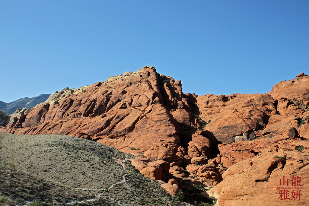 Red Rock Canyon National Conservation Area | Welcome to