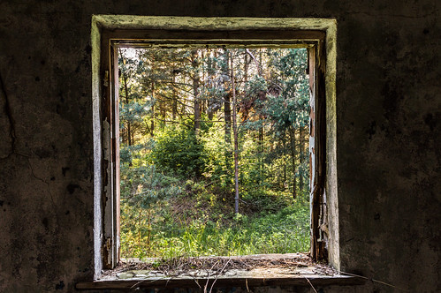 Window | by `TOMS`