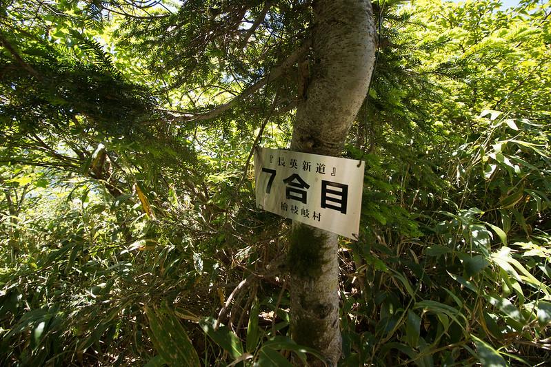 20150712-燧ヶ岳-0905.jpg