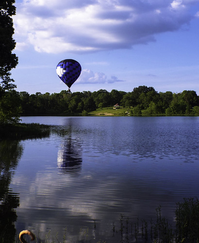 pets water clouds nubes trees green grass park lake reflections cielo blue white black landscape air balloon hot dark light letsguide