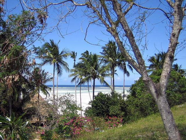 Indian Ocean view - Pwani Mchangani, Zanzibar