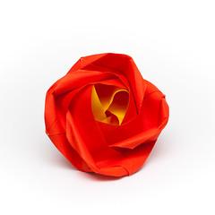 สอนวิธีพับกระดาษเป็นดอกกุหลาบ (แบบฐานกังหัน) (Origami Rose - Evi Binzinger) 025