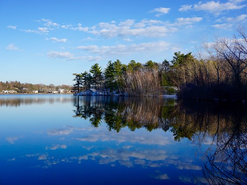 trees winter reflection water massachusetts newengland calm pw woburn hornpond