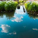 山田池公園6・Yamada Pond Park