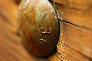 Bolt Closeup