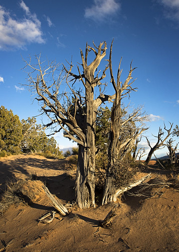 landscapes utah unitedstates escalante grandstaircase 2014 grandstaircaseescalantenationalmonument gsenm nikond600 nikon28105f3535afd