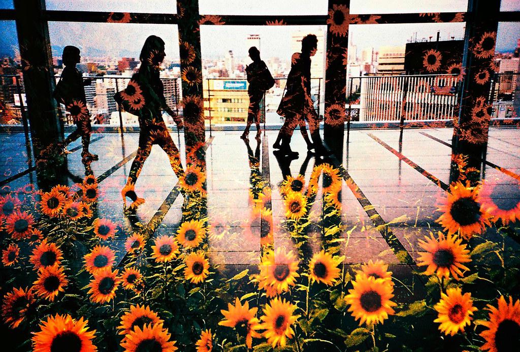 夏色パッセージ -urban oasis in summer