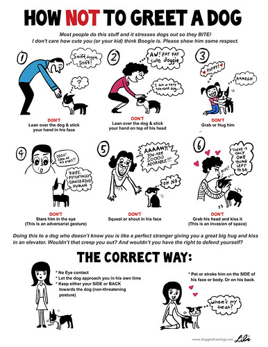 How Not To Greet A Dog (kid-friendly version) | by lili.chin